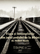 Andrei Baciu: Viaţa şi întâmplările din jurul podului de la Blejoi