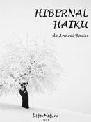 Andrei Baciu: Hibernal haiku