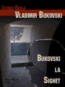 Vladimir Bukovski: Bukovski la Sighet